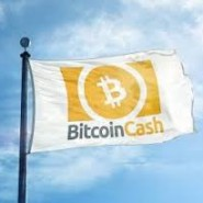 BCH Bitcoin Cash Review